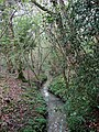 Stream, South Fields - geograph.org.uk - 1251273.jpg