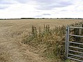 Stubble field near North Togston - geograph.org.uk - 547433.jpg