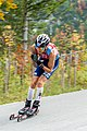 Summer Grand Prix Competition Planica 2017 2017 10 01 9493.jpg