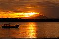 Superagui Island.jpg