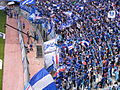 Suwon Samsung Bluewings supporters Grand Bleu.jpg