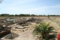 Sybaris archeological park 1.jpg