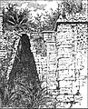 TLM D085 The Maya arch.jpg