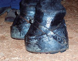 Soring - Stacks are built-up pads between shoe and hoof, usually held on by a band over the front of the hoof.