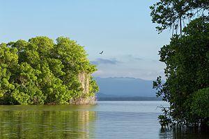 Laguna de Tacarigua National Park - Image: Tacarigua Lagoon National Park Parque Nacional Laguna de Tacarigua (10296002123)