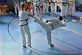 Taekwon-Do Landesmeisterschaft Uetersen 2014 08.jpg