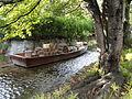 Takase River (Kyoto) - DSC05936.JPG