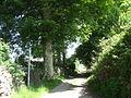 Tal-y-sarn lane - a farm road followed by a public footpath - geograph.org.uk - 827925.jpg