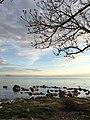 Tallinn (34176104594).jpg