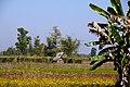 Taunggyi, Myanmar (Burma) - panoramio (4).jpg