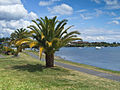 Taupo Lake-2764.jpg