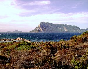 Tavolara Island - Tavolara from the Sardinian shore