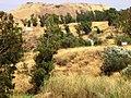 Tell Beit She'an - panoramio.jpg