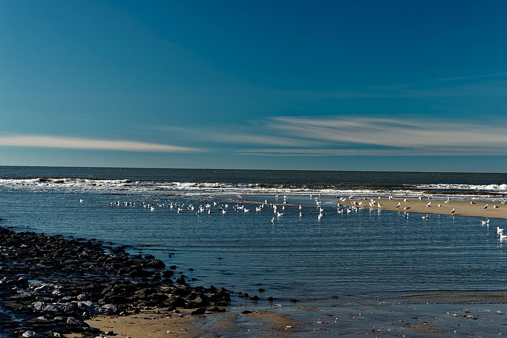 file:texel - beach between 'paal 12 & 15' - view wnw i