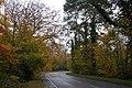 The Banbridge Road, Tullylish - geograph.org.uk - 276742.jpg