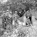 The British Army in Italy 1944 NA13256.jpg