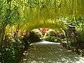 The Laburnum Arch at Bodnant Garden - geograph.org.uk - 207049.jpg