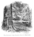 The New Forest its history and its scenery - page 006.png