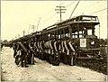 The Street railway journal (1907) (14573347937).jpg