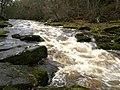The Strid in full flow - geograph.org.uk - 625123.jpg