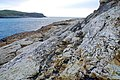 The coast of Islandmagee (2) - geograph.org.uk - 636566.jpg