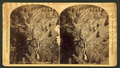 The seven falls, Cheyenne Canon, Colorado, by W. H. Jackson & Co..png
