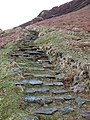 The stone path at the Grey Mare's Tail Nature Reserve - geograph.org.uk - 725939.jpg
