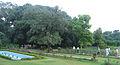 Theen Murthi Bhavan - Delhi, garden inside1.jpg