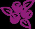 Three Roses Purple R.png