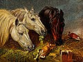 Three horses eating from a manger with two birds sitting on Wellcome V0020681.jpg