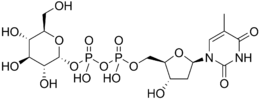 Thymidine diphosphate glucose.png