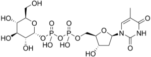 Thymidine diphosphate glucose - Image: Thymidine diphosphate glucose