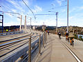 Tilikum Crossing - bicycles 3.jpg