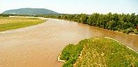 Tisa river in Zakarpattia (Ukraine).jpg