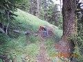 Todd Springs Trail Work, 2012 (26921914208).jpg