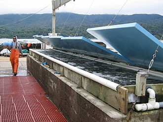 Tomales Bay Oyster Company - Image: Tomales Bay Oyster Company 2