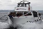 Tonnerres de Brest 2012 - Corsaire - 202.jpg