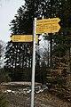 Tourisme pédestre Bois Faucan Jorat 28.02.2012.jpg