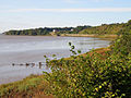 Towards Purton - geograph.org.uk - 992423.jpg