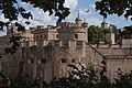 Tower of London (14908077561).jpg