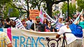Trans Solidarity Rally and March 55433 (17609758399).jpg