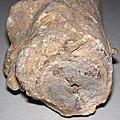 Travertine stalactite (dripstone) 7.jpg