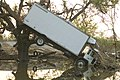 Truck in a tree after Hurricane Katrina.jpg