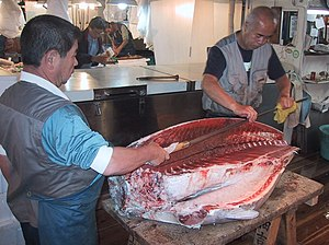 Fish processing - Tuna being processed with an Oroshi hocho tuna knife at the Tsukiji fishmarket.