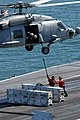 USS Ronald Reagan DVIDS100506.jpg