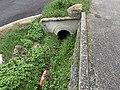 Un extincteur abandonné dans un fossé Lotissement chante-pie (Beynost).jpg