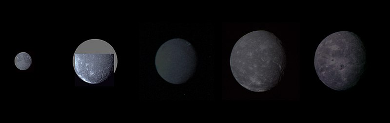 The five largest moons of Uranus compared at their proper relative sizes and brightnesses. From left to right (in order of increasing distance from Uranus): Miranda, Ariel, Umbriel, Titania, and Oberon. Uranian moon montage.jpg