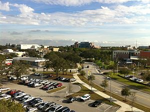 University of South Florida - Overlooking the USF Tampa campus.