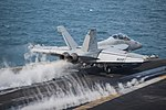 VAQ-130 EA-18G Growler launching from USS Harry S. Truman (CVN-75) 140113-N-ZG705-032.jpg