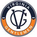 VG Logo 2017.png